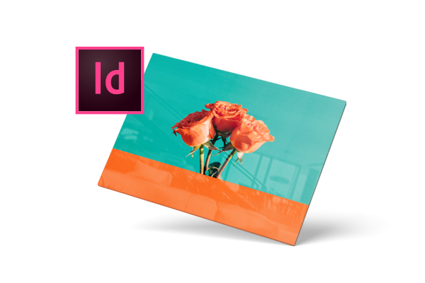 Plug-in voor Adobe InDesign